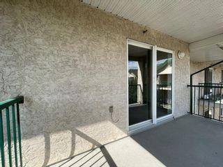Photo 26: 533 11325 83 Street in Edmonton: Zone 05 Condo for sale : MLS®# E4256939