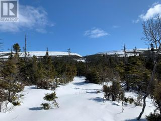 Photo 5: 2 Hynes Road Unit#ROUTE 460 in Port Au Port East: Vacant Land for sale : MLS®# 1233625