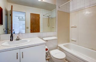 Photo 12: 181 Templemont Drive NE in Calgary: Temple Semi Detached for sale : MLS®# A1122354
