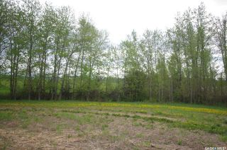 Photo 14: Weiss Lakefront Acreage in Big River: Lot/Land for sale : MLS®# SK834150