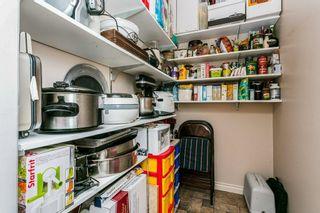 Photo 32: 53 HEWITT Drive: Rural Sturgeon County House for sale : MLS®# E4253636