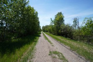 Photo 68: 80046 Road 66 in Gladstone: House for sale : MLS®# 202117361