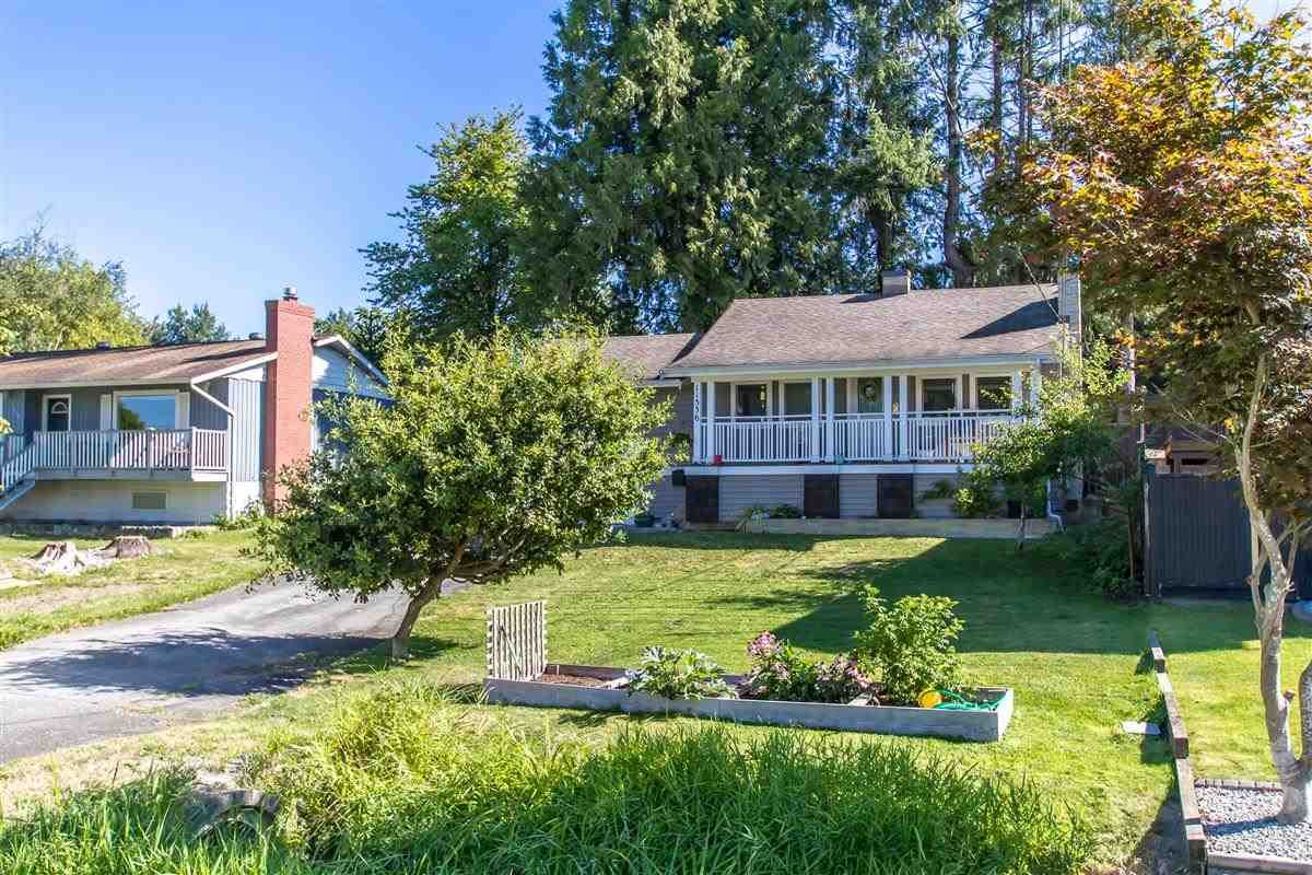 Main Photo: 11336 MELVILLE Street in Maple Ridge: Southwest Maple Ridge House for sale : MLS®# R2495503