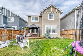 Photo 37: 1837 Reunion Terrace NW: Airdrie Detached for sale : MLS®# A1149599