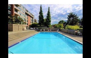 Photo 9: 202 4101 Yew Street in Vancouver: Arbutus Condo for sale (Vancouver West)  : MLS®# R2383784
