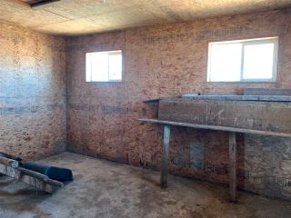 Photo 10: 42540A HWY 13: Rural Flagstaff County House for sale : MLS®# E4237916