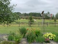Photo 41: 461028 RR 74: Rural Wetaskiwin County House for sale : MLS®# E4252935