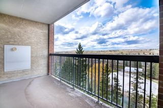 Photo 17: 611 8604 48 Avenue NW in Calgary: Bowness Apartment for sale : MLS®# A1107352