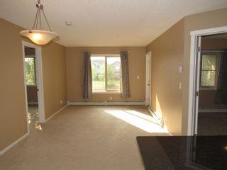 Photo 14: 207 111 WATT Common in Edmonton: Zone 53 Condo for sale : MLS®# E4259002