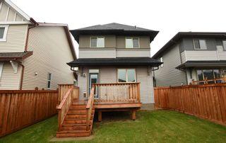 Photo 42: 4110 ALLAN Crescent in Edmonton: Zone 56 House for sale : MLS®# E4249253