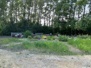 Photo 30: Zerr Farm in Big Quill: Farm for sale (Big Quill Rm No. 308)  : MLS®# SK864365