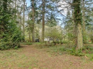 Photo 7: 867 Sayward Rd in : SE Cordova Bay House for sale (Saanich East)  : MLS®# 871953