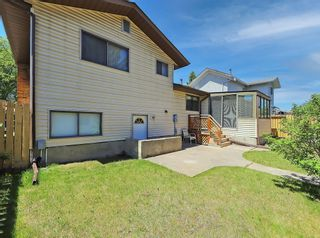 Photo 36: 216 Whitewood Place NE in Calgary: Whitehorn Detached for sale : MLS®# A1116052