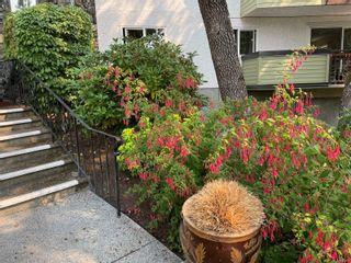 Photo 26: 311 3962 Cedar Hill Rd in : SE Mt Doug Condo for sale (Saanich East)  : MLS®# 884071