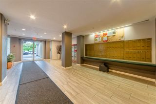 """Photo 23: 302 19122 122 Avenue in Pitt Meadows: Central Meadows Condo for sale in """"Edgewood Manor"""" : MLS®# R2593099"""