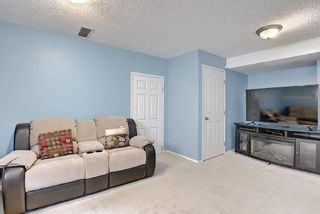 Photo 23: 78 Appleburn Close SE in Calgary: Applewood Park Detached for sale : MLS®# A1100841