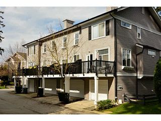 """Photo 20: 59 15075 60 Avenue in Surrey: Sullivan Station Townhouse for sale in """"Natures Walk"""" : MLS®# F1435110"""