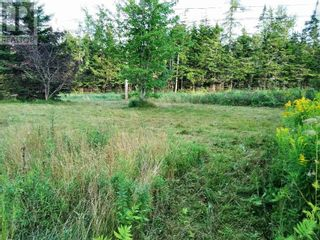 Photo 9: 555 Queens RD in Sackville: Vacant Land for sale : MLS®# M133180