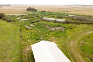 Photo 28: 55416 RGE RD 225: Rural Sturgeon County House for sale : MLS®# E4257944