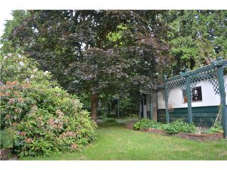 Photo 6: 12170 FLETCHER Street in Maple Ridge: East Central House for sale : MLS®# V1127377
