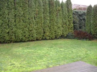 Photo 15: 31103 SIDONI Avenue in Abbotsford: Abbotsford West House for sale : MLS®# F1439682