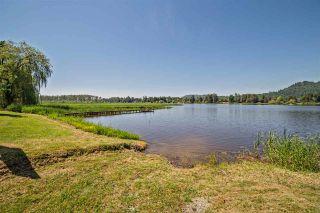 "Photo 24: 9061 EAGLE Road in Mission: Dewdney Deroche House for sale in ""HATZIC LAKE WATERFRONT"" : MLS®# R2174310"