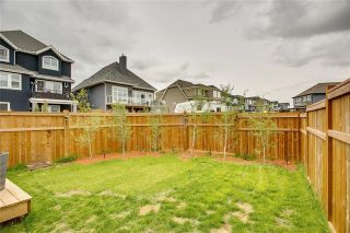 Photo 45: 393 MASTERS Avenue SE in Calgary: Mahogany Detached for sale : MLS®# C4302572