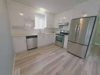 Photo 13: 23 Erin Meadows Court SE in Calgary: Erin Woods Detached for sale : MLS®# A1124454