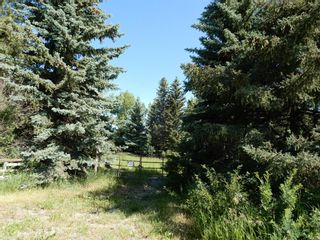 Photo 2: 112152 266 Avenue W: Rural Foothills County Residential Land for sale : MLS®# A1065931