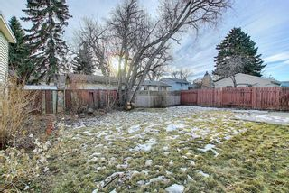 Photo 21: 451 Lysander Drive SE in Calgary: Ogden Detached for sale : MLS®# A1053955