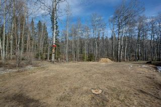 Photo 38: 299022 316 Street W: Rural Foothills County Detached for sale : MLS®# A1098190