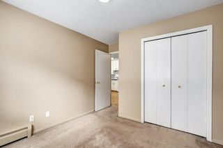 Photo 18: 107 835 19 Avenue SW in Calgary: Lower Mount Royal Condo for sale : MLS®# C4117697