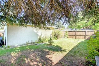 Photo 36: 2618 46 Street SE in Calgary: Forest Lawn Detached for sale : MLS®# A1146875