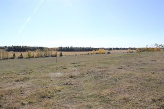 Photo 15: ON Township Road 355A: Rural Red Deer County Land for sale : MLS®# A1039276