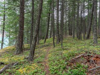 Photo 11: 5364 S SETON Lake: Lillooet Lots/Acreage for sale (South West)  : MLS®# 161243