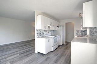 Photo 20: 3036 Doverville Crescent SE in Calgary: Dover Semi Detached for sale : MLS®# A1148570