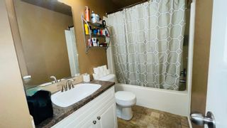 Photo 33: 56109 RR 262: Rural Sturgeon County House for sale : MLS®# E4259032
