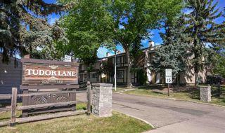 Photo 28: 104 TUDOR Lane in Edmonton: Zone 16 Townhouse for sale : MLS®# E4261181