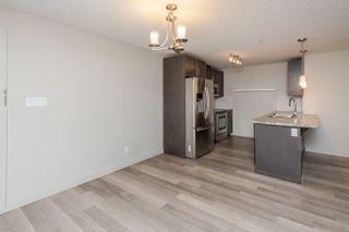 Photo 13: 256 7805 71 Street in Edmonton: Zone 17 Condo for sale : MLS®# E4266039