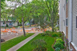 Photo 47: 202 8503 108 Street in Edmonton: Zone 15 Condo for sale : MLS®# E4253305