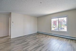 Photo 31: 201 4407 23 Street in Edmonton: Zone 30 Condo for sale : MLS®# E4254389