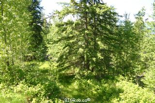 Photo 17: 4827 Goodwin Road in Eagle Bay: Vacant Land for sale : MLS®# 10116745