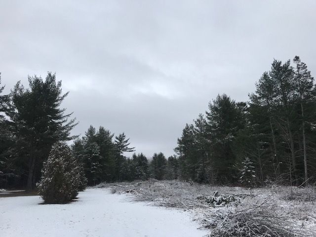 Main Photo: 849 River Road in Sault Ste. Marie: Vacant Land for sale