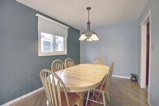 Photo 12: 9832 187 Street in Edmonton: Zone 20 House for sale : MLS®# E4253744