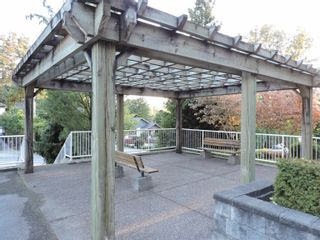 """Photo 3: 305 2515 PARK Drive in Abbotsford: Abbotsford East Condo for sale in """"VIVA"""" : MLS®# R2613425"""