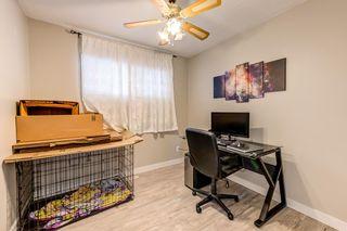 Photo 20: 4030 117 Avenue in Edmonton: Zone 23 House for sale : MLS®# E4246156