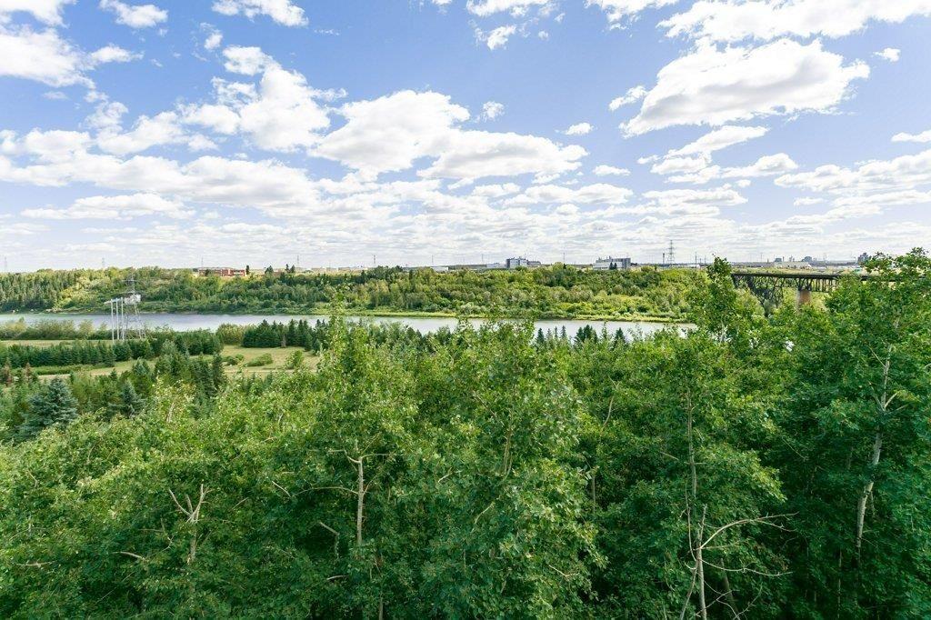 Photo 22: Photos: 403 1188 HYNDMAN Road in Edmonton: Zone 35 Condo for sale : MLS®# E4259060