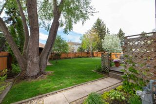 Photo 48: 14717 43A Avenue in Edmonton: Zone 14 House for sale : MLS®# E4256713