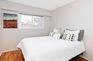 Photo 14: 3988 Larchwood Dr in : SE Lambrick Park House for sale (Saanich East)  : MLS®# 876249