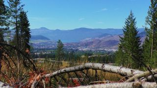 Photo 1: 6575 Dixon Dam Road in Vernon: South BX Vacant Land for sale (North Okanagan)  : MLS®# 10106215